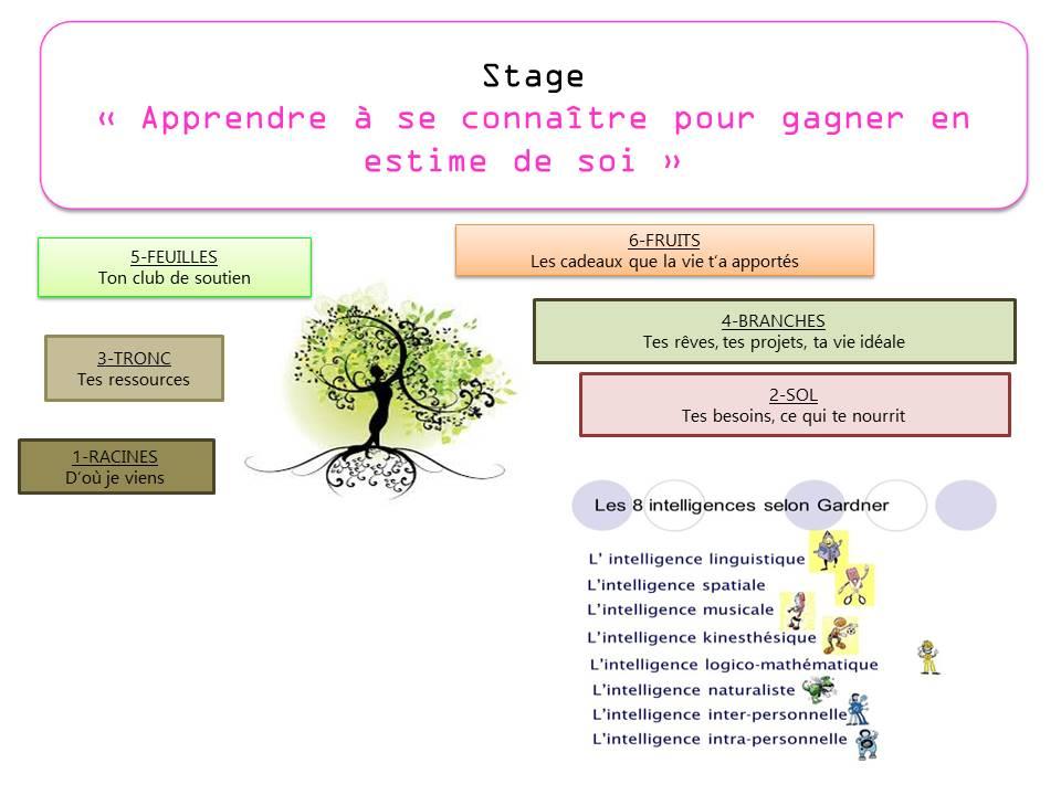 Stage arbre de vie
