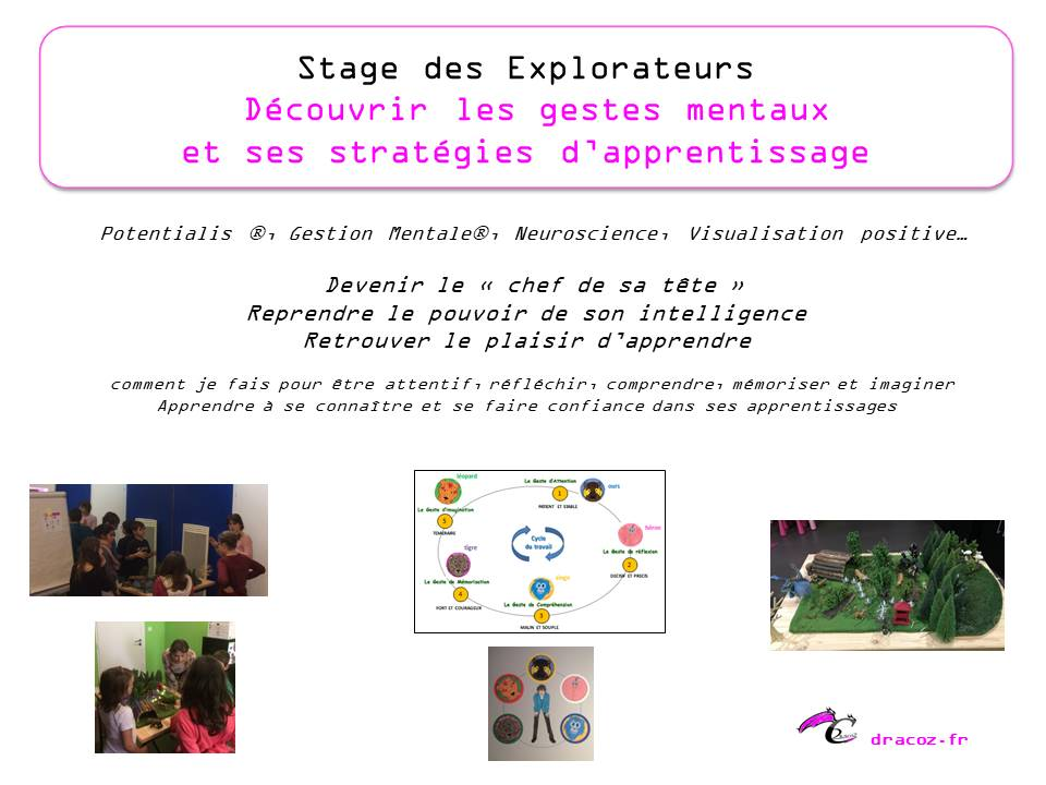 Stage explorateurs